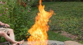 fireweb.jpg